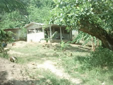 Francisco Benedith School